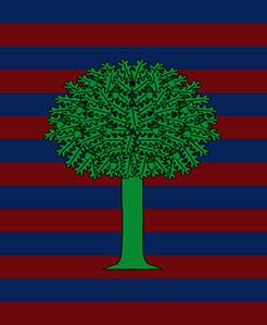 750px-flag_of_floresta_(boyacá)svg-1--crop-u2824